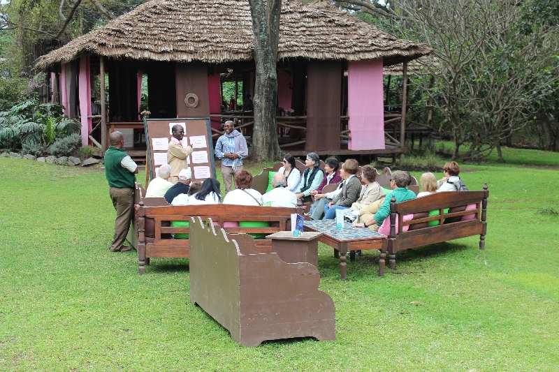 Coffee Garden at Arusha Coffee Plantation, Tanzania