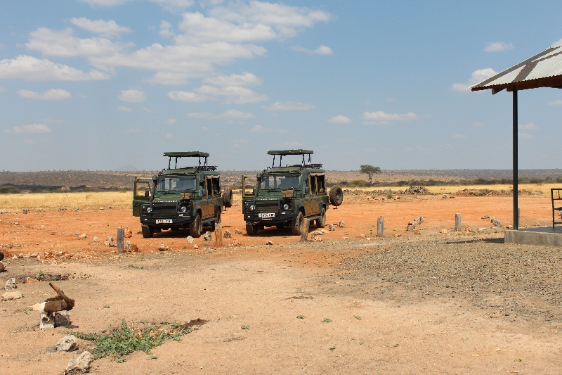 Our pickup 4WD's at Tarangire National Park, Tanzania