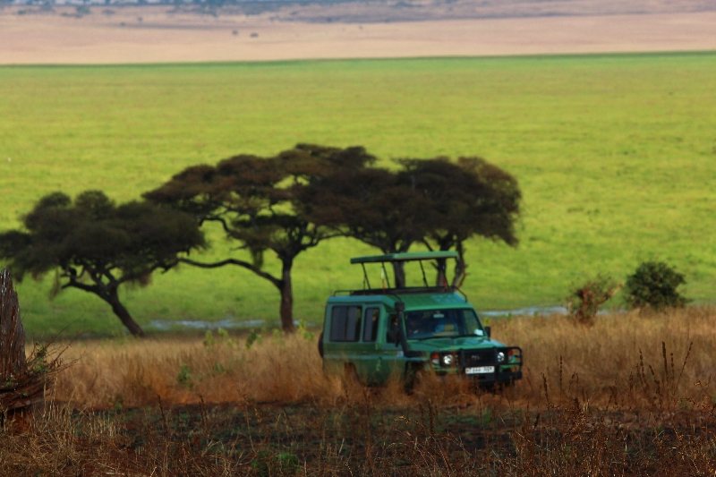 Beautiful scenery in Tarangire NP, Tanzania