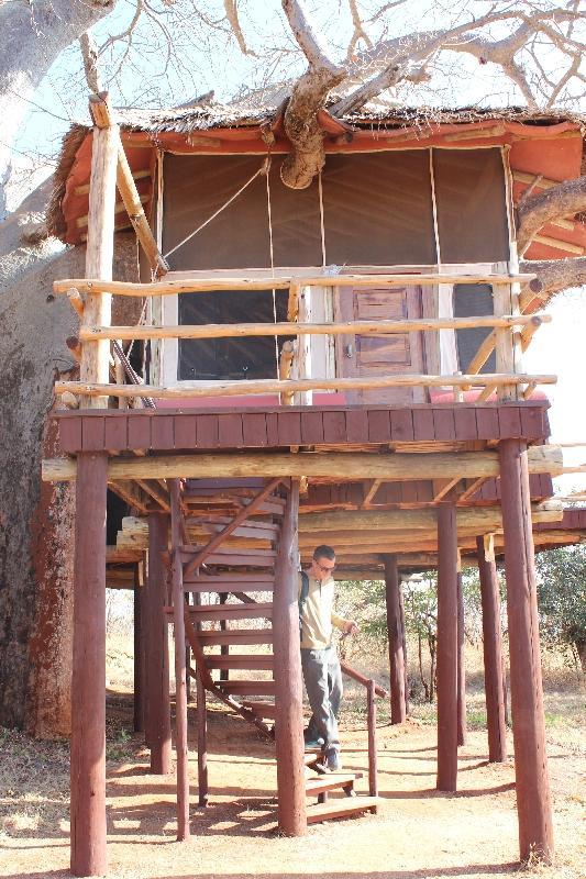 Treehouse number 6 Treetops, Manyara Tanzania