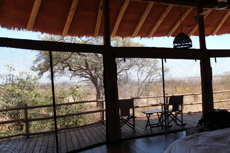 Looking out over to our private tree house balcony Treetops, Manyara Tanzania