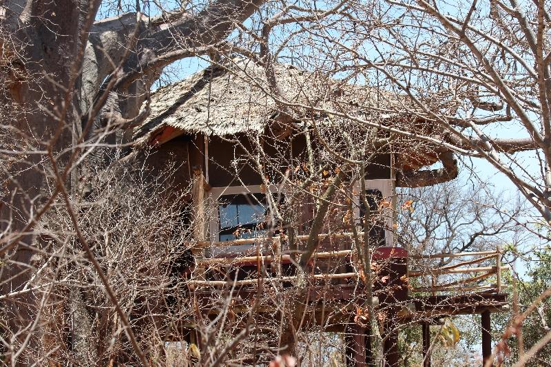 Tarangire Treetops Lodge House, Tanzania