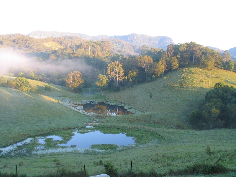 sunrise over the springbrook mountains seen from the garden at Hillcrest Retreat Murwillumbah Australia Oceania