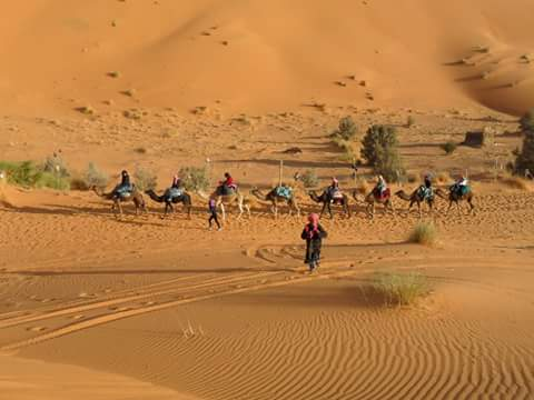 4 Days & 3 Nights Desert Tour From Fez Tangier Morocco Diary Experience