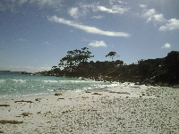 Beautiful beaches Bay of Fires