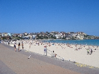 Best Sydney beaches