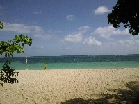 The beach on Green Island, off