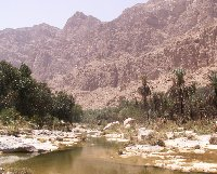 The ponds and mountain view at Wadi Tiwi