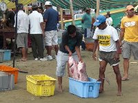 Fish market in Puerto Lopez