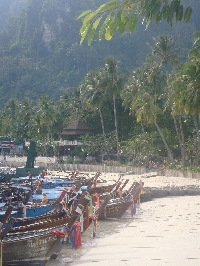 The beach in Ko Phi Phi