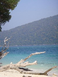 Photos of the beach at Ko Rawi