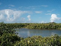 Inland pond in Aguilla, Lesser Antilles