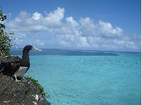 Wallis and Futuna islands Mata-utu Review Photo
