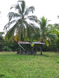 Bocas del Toro on Isla Colon Panama Review Sharing