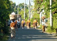 Lovina Beach Bali Indonesia Trip Experience