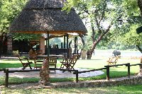 Gweru Antelope Park Zimbabwe Blog Sharing