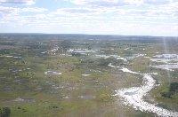 Okavango Delta safari tour Maun Botswana Album Pictures