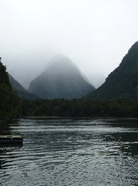 Milford Sound New Zealand Diary Information