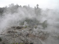 Sightseeing Rotorua touring New Zealand Review Photo
