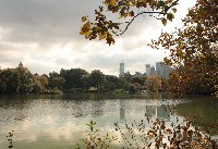 Bus tour sightseeing in New York City United States Holiday