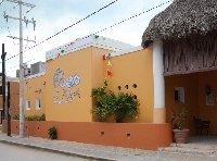 Flamingo Tour in Yucatan Mexico Celestun Trip Experience