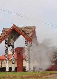 Day Trip to Rotorua from Auckland New Zealand Review Sharing