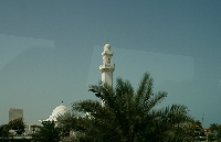 Tour from Dubai to Abu Dhabi United Arab Emirates Photo Gallery