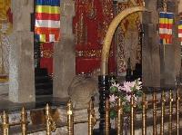 Kandy Sri Lanka Temple Tour Trip Photos