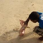Boys catching a shark at Santa Maria Pier Cape Verde Travel