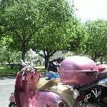 Australia Pink vespa