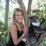 Photo with koala