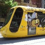 Melbourne Australia Bee tram