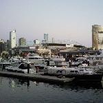 The Docklands panorama