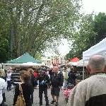 The Salamanca markets in Hobart Australia Holiday Photos