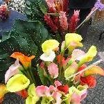 Fresh flowers at Salamanca Place