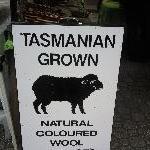 The Salamanca markets in Hobart Australia Blog Review