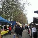 The Salamanca markets in Hobart Australia Photo Gallery