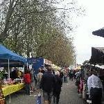 The Salamanca markets in Hobart Australia Photo Gallery