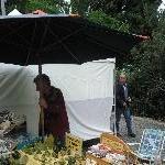 The Salamanca markets in Hobart Australia Travel Tips
