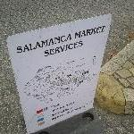 The Salamanca markets in Hobart Australia Trip Photographs
