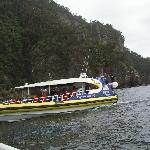 Tasman Island Cruise Charter