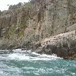 Tour Tasman Island