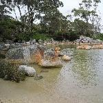 Green water bay @ The Gardens, Bay of Fires Australia
