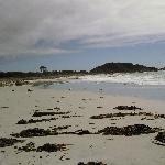 Beaches Tasmania