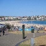 Pictures of Bondi beach
