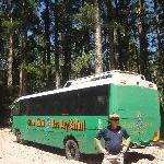 Fraser Island 4 WD Tour, Hervey Bay Australia