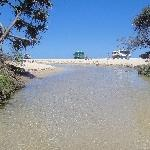 Pictures of Eli Creek on Fraser Island