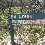 Eli Creek on Fraser Island