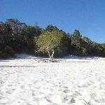 The beautiful sand of Lake McKenzie beach
