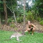 The Steve Irwin Australia Zoo in Beerwah, Queensland Diary Photo
